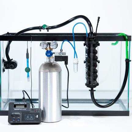 hệ thống co2 trong bể thủy sinh