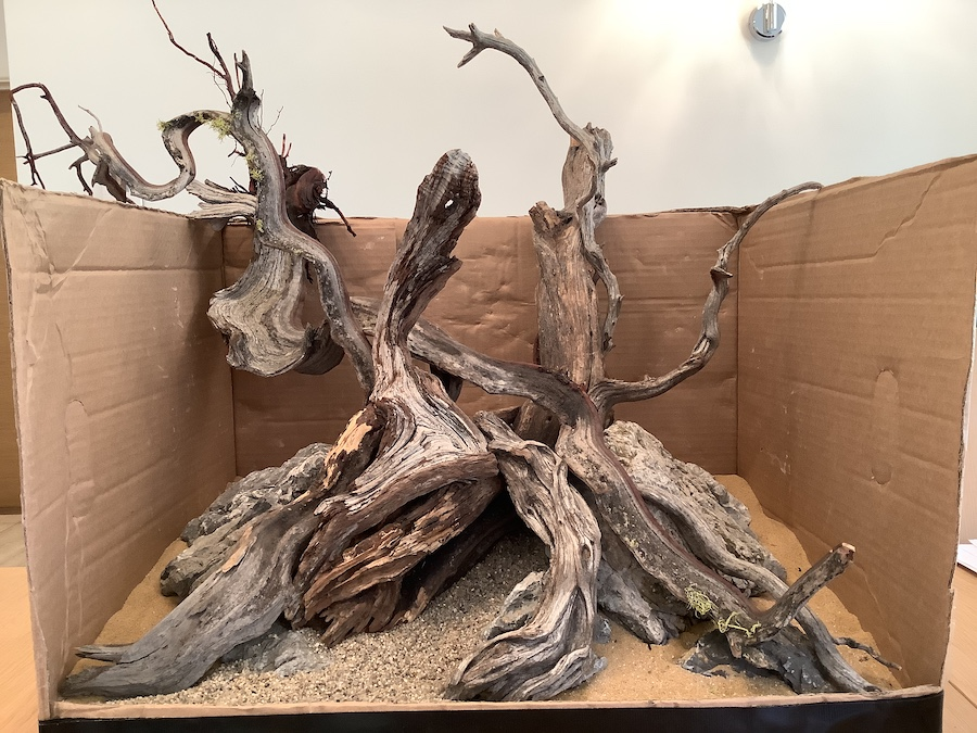 a hardscape for aquarium with driftwood