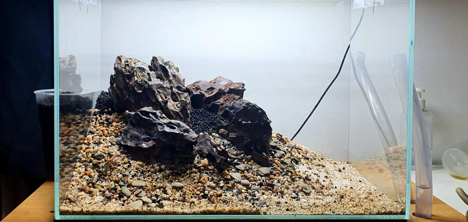 simple aquarium hardscape